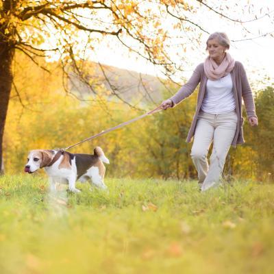 Senhora a passear o cão