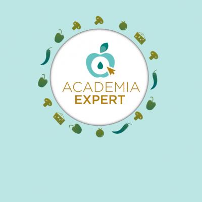 Academia Expert